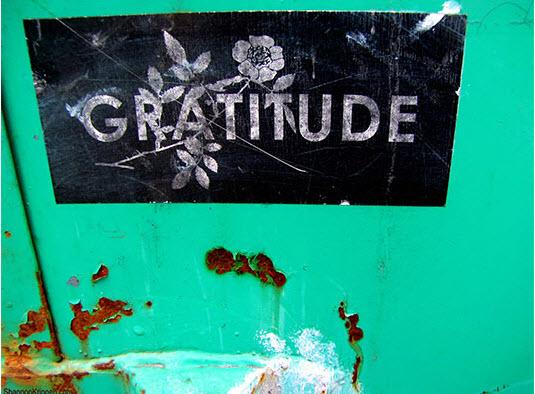 Gratitude_Creative commons_Shannon_Kringen